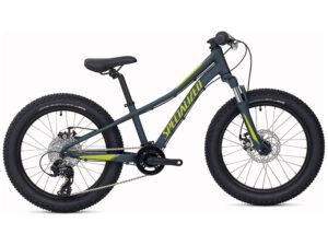 Bicicleta Specialized Riprock 20